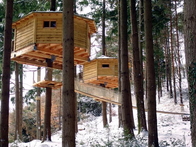 Un rbol como una casa el blog de this is kool - Como construir una casa en un arbol ...