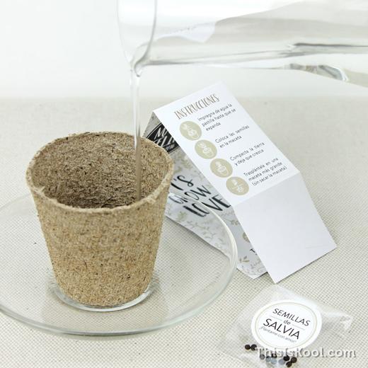 KIT-Semillas-Detalle-Boda-Cultivo-Planta-5
